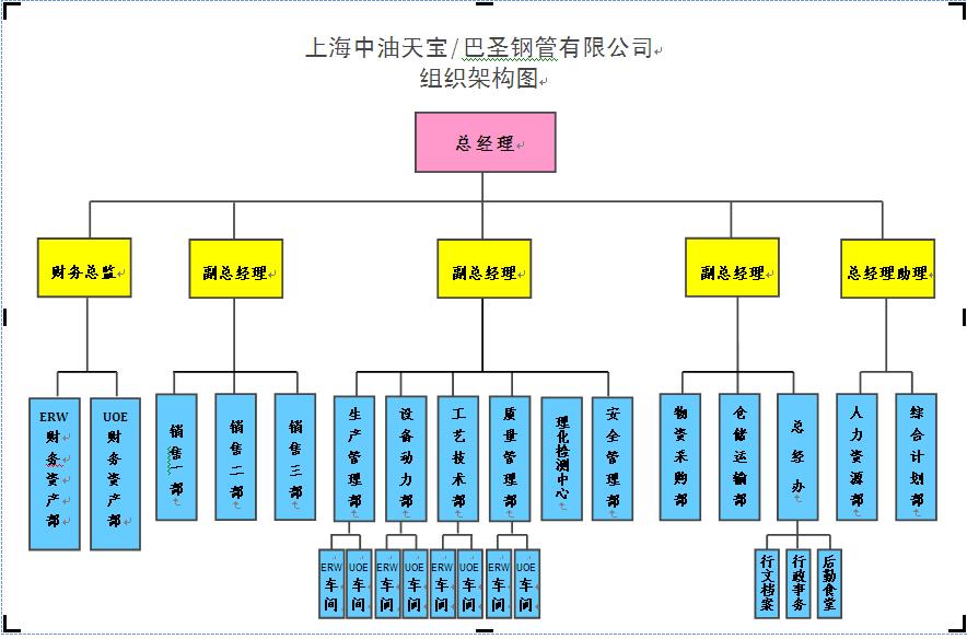 财务总监组织结构